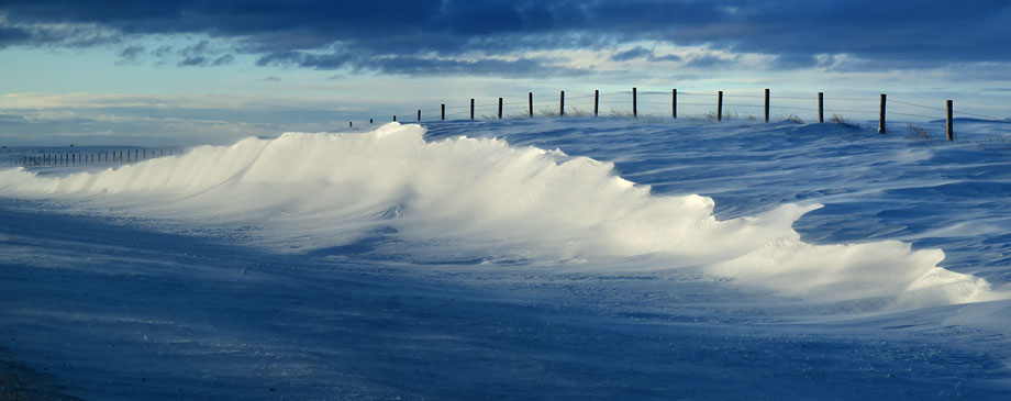 Snow drift that looks like a wave.