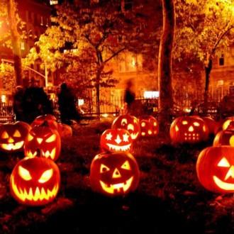 Hawk Talk : Happy Halloween